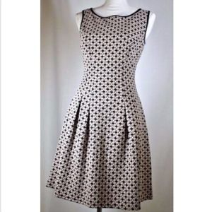 Max Edition women's dress size small fit flare